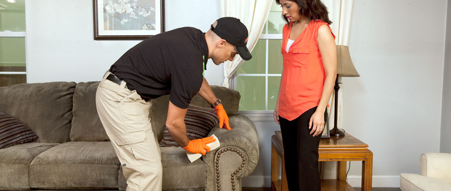 South Jordan, UT carpet upholstery cleaning